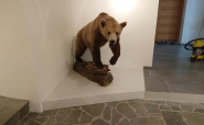 Sockelpodest für Bär