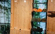 Jagdabteilung bei Arzberger - Foto: Ihr Internettischler