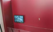 Monitor und Player für Narzissenkorso